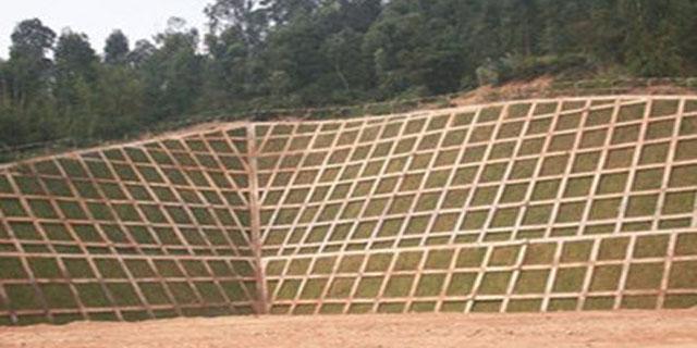 扬州生态护坡砖怎么样,护坡砖