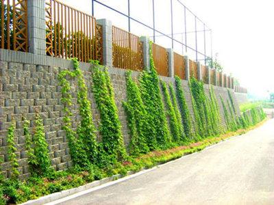 镇江自嵌式植生鱼巢型挡土砖批发 江苏水宇环境治理供应