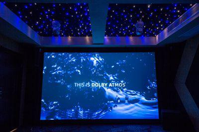 上海专业私人影院一套多少钱 诚信互利 上海树创智能科技供应