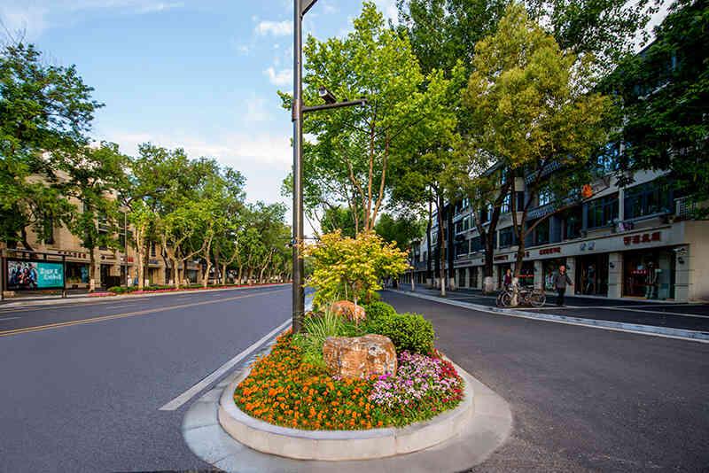 六合区附近园林绿植租摆多少钱 创新服务 南京春之恋景观工程供应