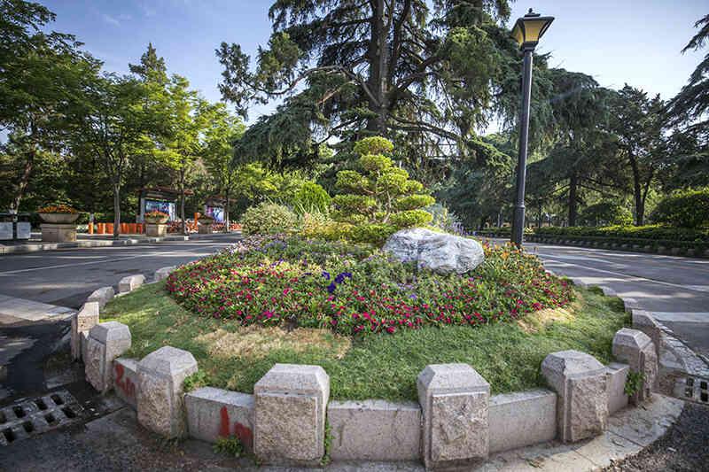 南京周边园林绿化工程报价 南京春之恋景观工程供应「南京春之恋景观工程供应」