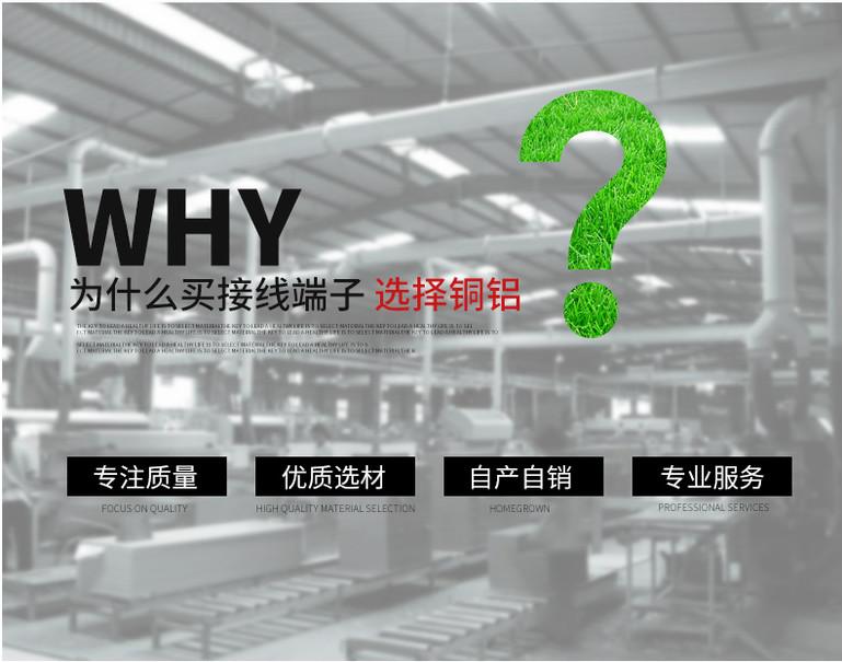 黑龙江专业铜铝鼻子 客户至上 山东景宸电力器材供应