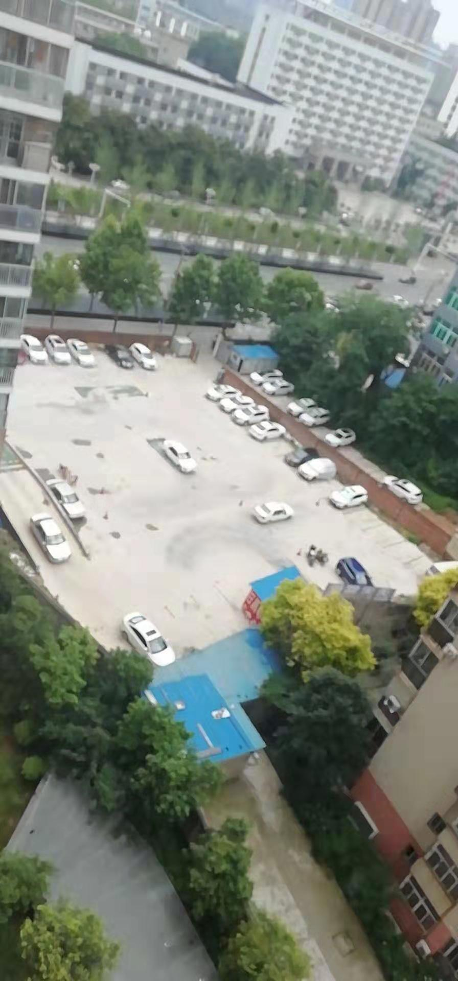 青山区建一冶堪金地花园学车新规定 贴心服务 武汉市天天和颐驾驶员培训供应