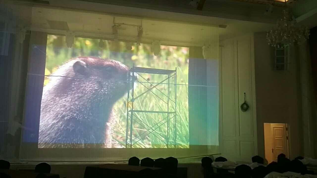 山东室内LED显示屏厂家供应 创造辉煌 合肥龙发智能科技供应