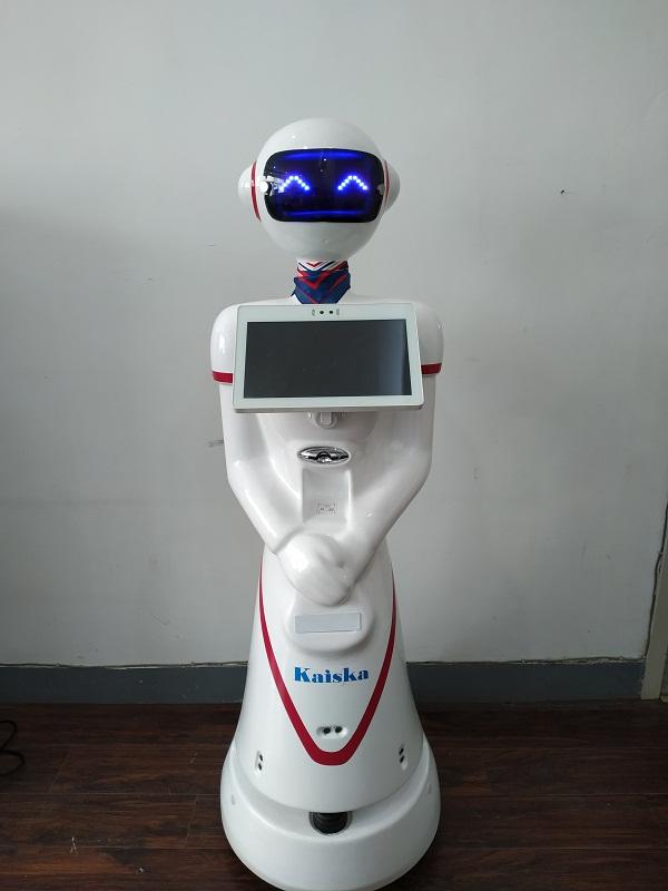 江苏医院智能导诊与挂号缴费机器人「凯士卡供应」