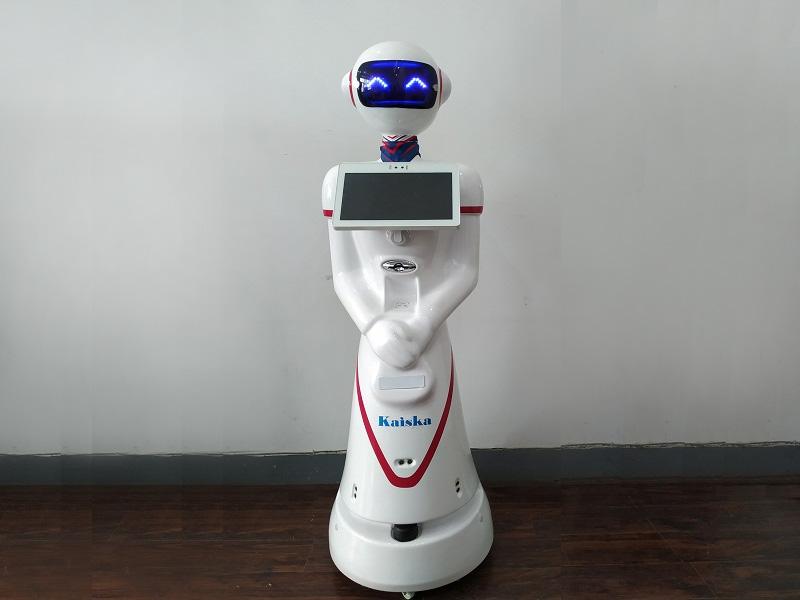 广州人形智能机器人「凯士卡供应」