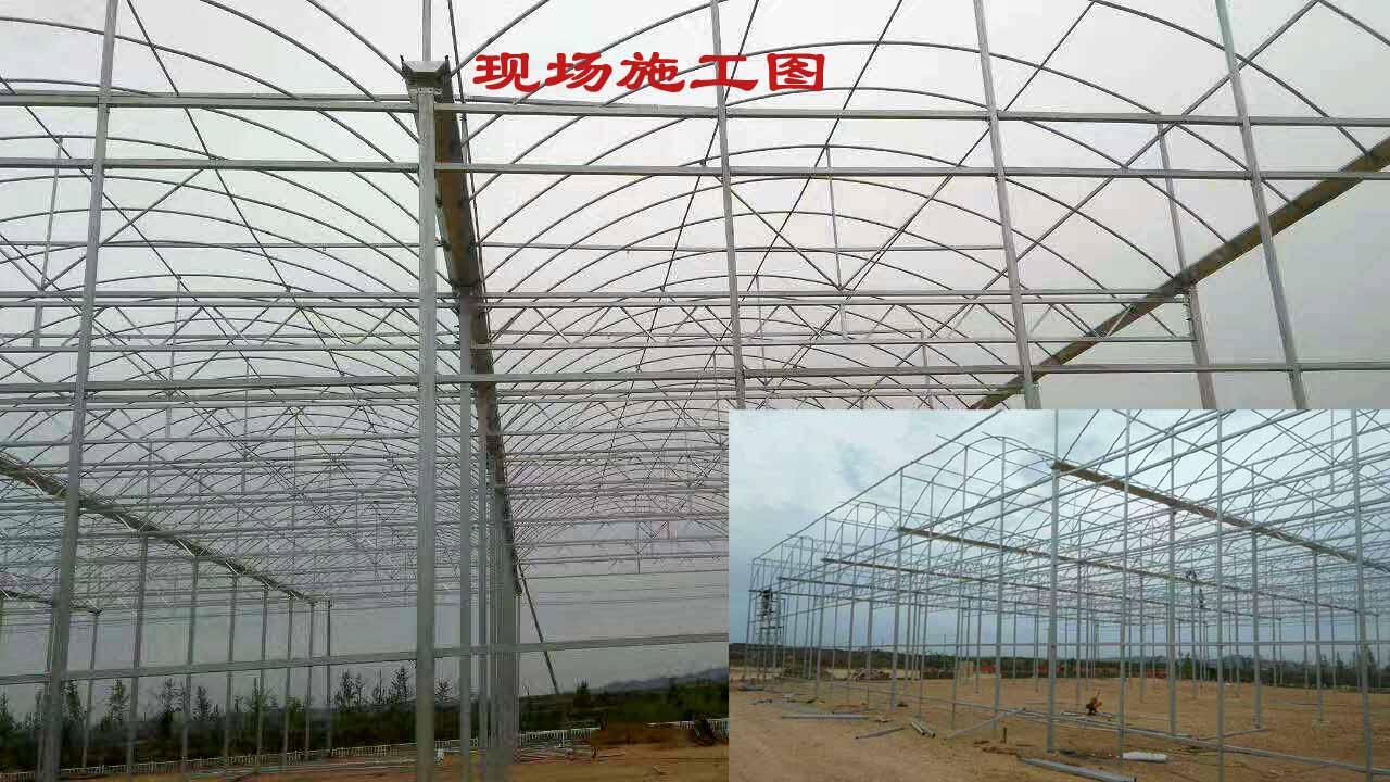 威海智能冬暖大棚厂家供应 铸造辉煌「威海九润生态农业供应」