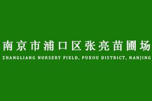 南京市浦口区张亮苗圃场