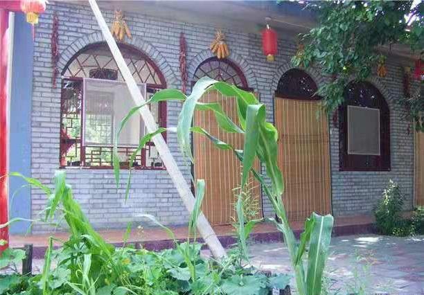 银川附近农家院 诚信经营「永宁县望远镇桃园休闲度假村供应」