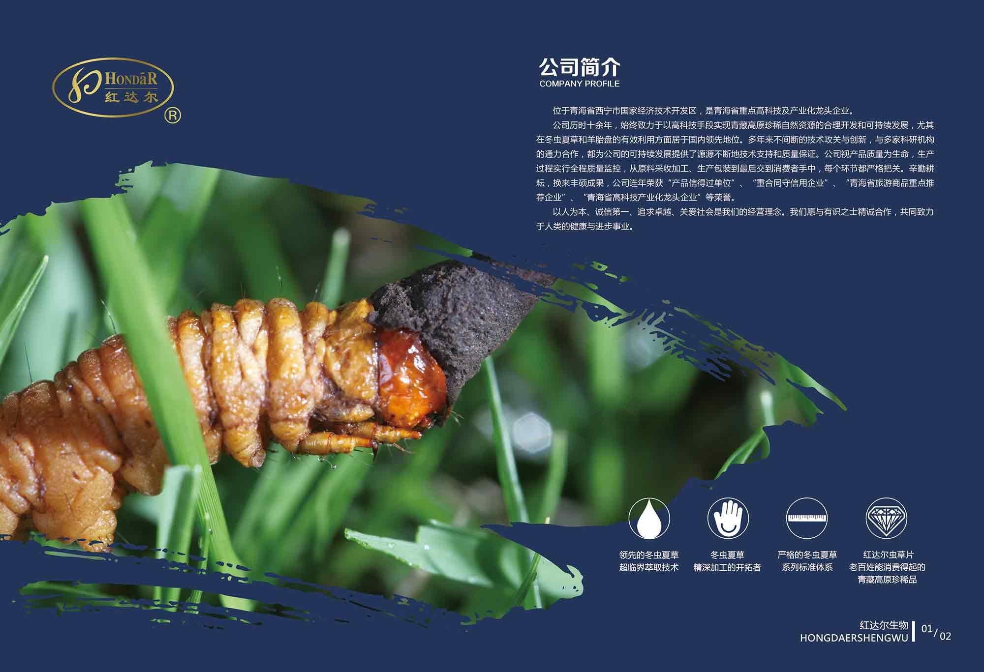 浙江專業食品原料供應廠家供應 歡迎來電「紅達爾供」