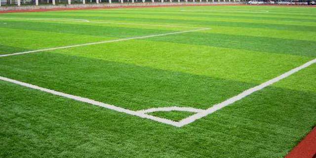 重庆人工草坪价格 湖北帝冠体育设施供应