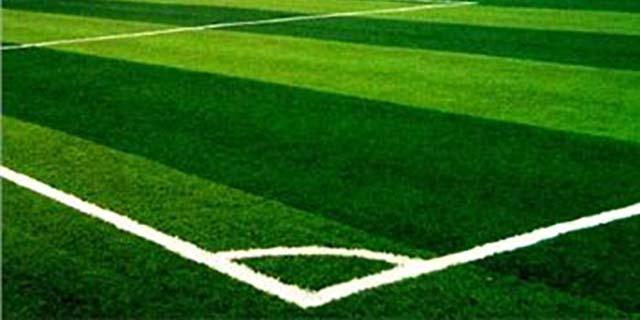 广东草坪推荐 湖北帝冠体育设施供应