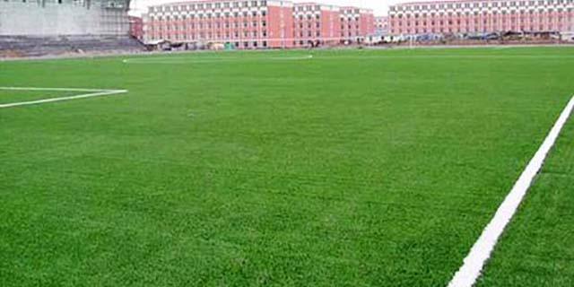 青海人造草坪推荐 湖北帝冠体育设施供应