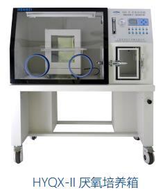上海智能厌氧培养箱畅销全国 上海恒跃医疗器械亚博百家乐