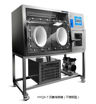 广西口碑好厌氧培养箱要多少钱 诚信服务 上海恒跃医疗器械供应