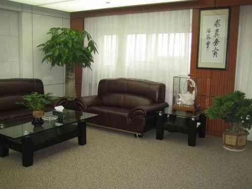 江苏苏邦工业园附近的花卉租赁公司 有口皆碑 南京春之恋景观工程供应