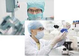 上海膳食纤维代餐饼干怎么样 上海养今坊生物科技供应