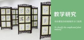 北京腊叶标本生产加工 新乡市维克科教仪器供应