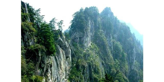 洛阳一日游必去景区 贴心服务「南阳市仙宝九旅游发展图片