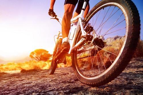 广东酷骑单车专业团队在线服务 惠州酷骑科技供应