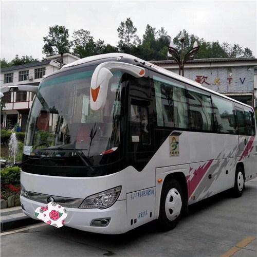 青海湖专业租车哪家服务好 海东润青国际旅行社供应