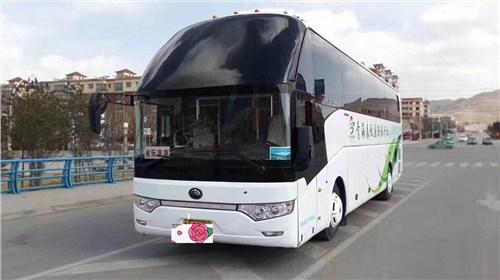 青海湖专业租车推荐 海东润青国际旅行社供应