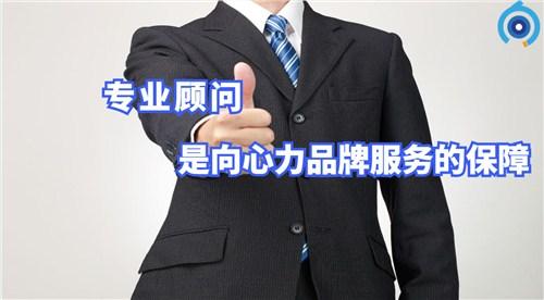 广州职业版权登记哪家好 真诚推荐「向心力供」