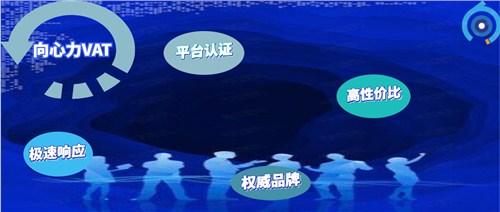 河北vat注册多少钱 创新服务「向心力供」