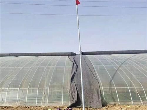 金水区蔬菜温室大棚价格 诚信互利 郑州蒂鑫机械设备供应