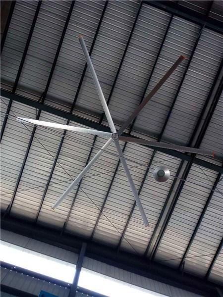 四川规格齐全大吊扇节能环保 来电咨询 上海爱朴环保科技供应