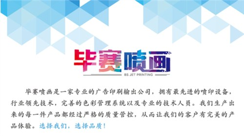 毕升(上海)实业有限公司