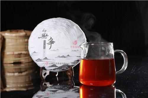 西双版纳普洱古树茶品牌招商 云南传茶茶业供应