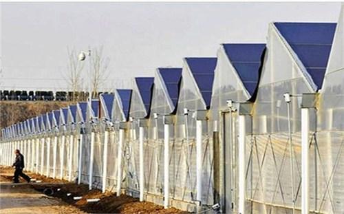 建邺区本地温室设计建造高性价比的选择 欢迎咨询「南京大邦智慧农业科技供应」
