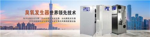 河北海洋馆水处理臭氧设备 广州市大环臭氧设备供应