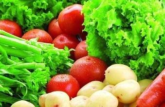 东莞蔬菜配送