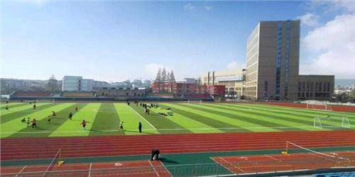 贵州复合型塑胶跑道优选企业 湖北帝冠体育设施供应