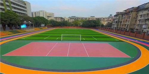 江苏新国标塑胶塑胶跑道材料 湖北帝冠体育设施供应