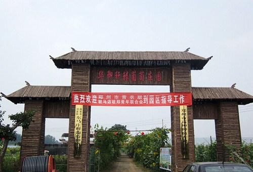 荥阳周边游去哪儿「郑州市富坤种植供应」
