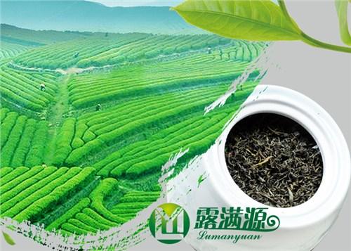原装茶叶要多少钱「露满源供应」