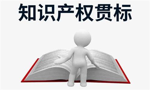 荆州高新区权威知识产权贯标 湖北从零到一科技供应