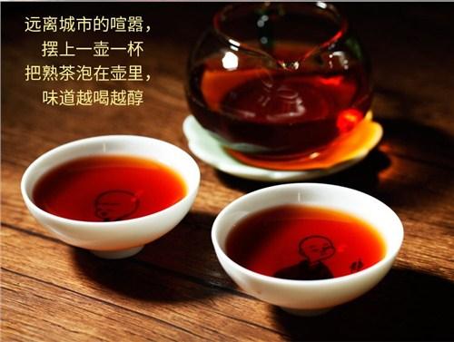 云南茶叶批发13769988868,茶