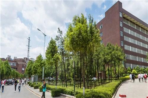 云南空乘专业职业学院 欢迎来电 云南聚联教育信息咨询供应