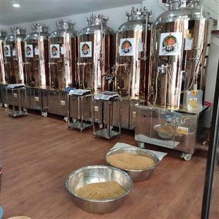 丽水啤酒机工厂「南阳市赛德啤酒科技供应」
