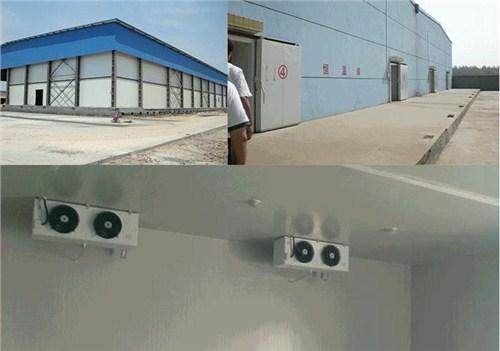 智能电商冷库 三公里的智能电商冷库 自动物联网智能电商冷库 欧莱特公司供