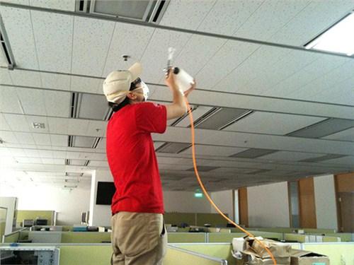优良灭鼠 灭蟑螂 杀白蚁咨询客服 欢迎咨询「苏州培欣环保科技供应」