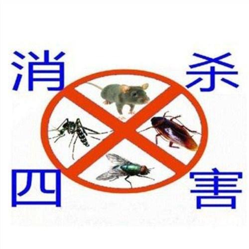 济源上门灭鼠方案 北京鹏辉生物科技供应