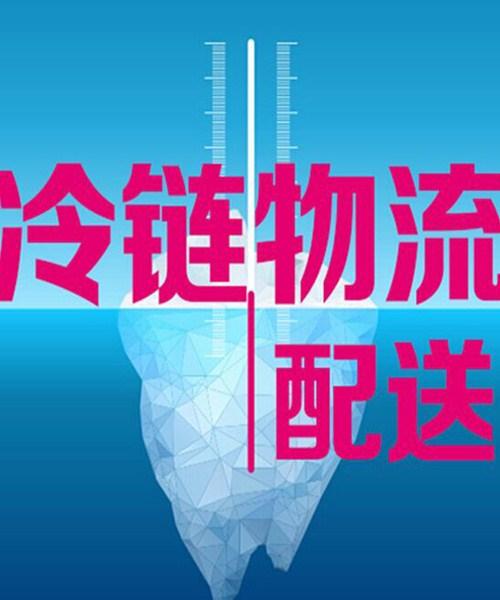 上海到嘉峪关冷冻物流公司,冷冻