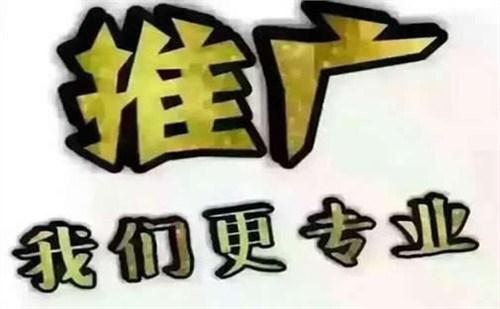 天津智能关键词排名上门服务 诚信经营 罗卜特科技信息技术供应