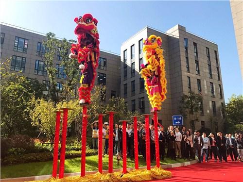 无锡专业舞狮舞龙价格 诚信经营「上海儒慧文化交流供应」