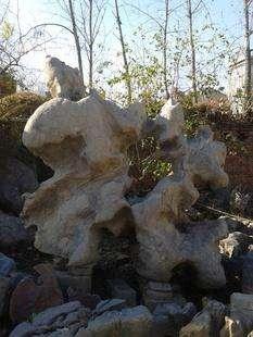 费县园林石源头好货,园林石